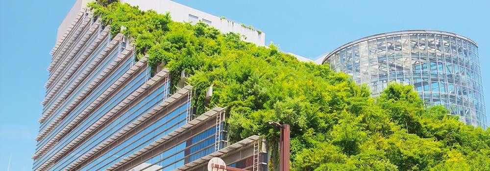 Una apuesta a través del conocimiento para construir futuros sostenibles
